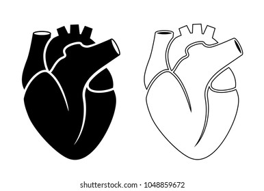 Black silhouette icon of human heart illustration isolated on white background