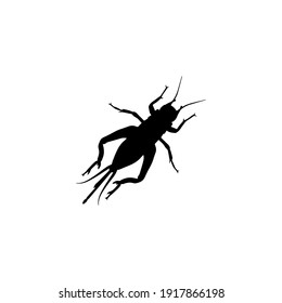 A black silhouette of a locust or a grasshopper is depicted on a white background. Wings, legs, antennae, head, abdomen are visible.