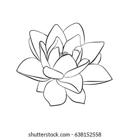 Black silhouette of lotus flowers icon on a white background.Vector illustration
