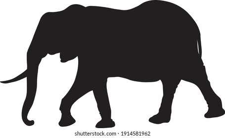 black silhouette of moving elephant
