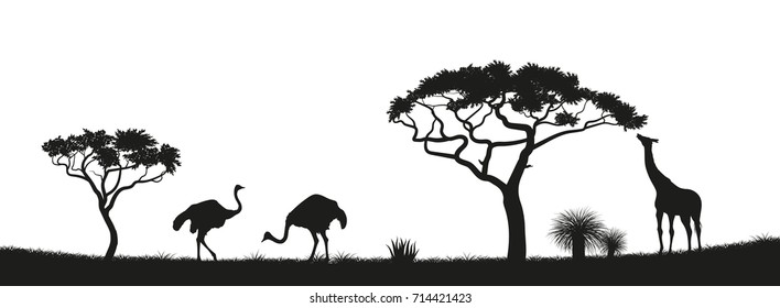 Black silhouette of ostrich, giraffe and trees in the savannah. Animals of Africa. African landscape. Panorama of wild nature. Vector illustration