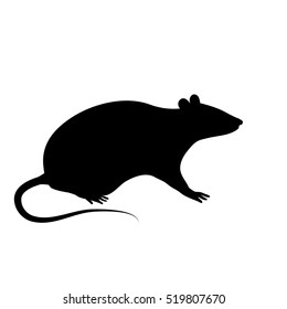 The black silhouette of a rat or mouse is sitting with a tail, paws and ears on a white background