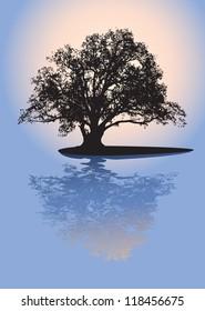Black silhouette of single beautiful big oak tree with reflection on sunrise. Vector.
