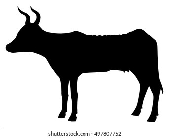 The black silhouette of skinny cows. Circuit sick cow. Hungry cow. Doodle.