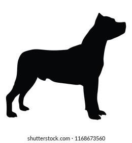 Black silhouette Staffordshire Bull Terrier purebred dog . Vector black portrait of dog isolated on white background.