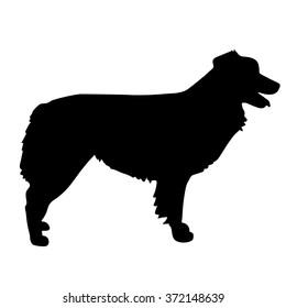 A black silhouette of a standing Australian Shepherd