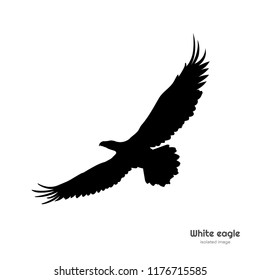 Black silhouette of white eagle. Isolated drawing of american symbol. Tattoo or print image. Vector illustration