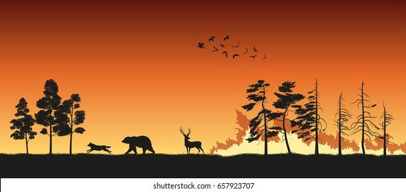 Black silhouettes of animals on wildfire background. Bear, wolf and deer escape from a forest fire. Vector illustration