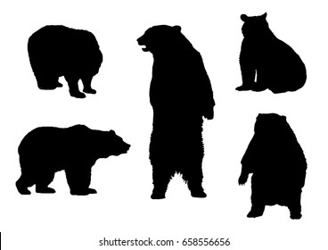 Black silhouettes of bear in different poses on a white background. Wild forest animals. Vector realistic illustrations
