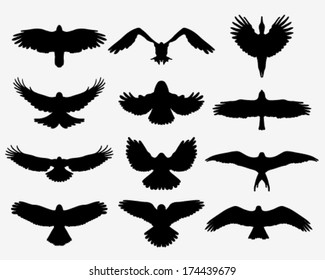 Black silhouettes of birds in flight, vector illustration