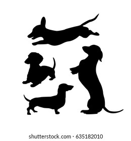 Black silhouettes of dachshunds dogs on a white background. Vector illustration for your cute design.