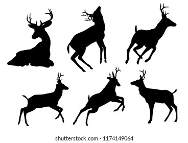 Black silhouettes of deer in different poses isolated on white background. Wild forest animals. Vector realistic illustrations