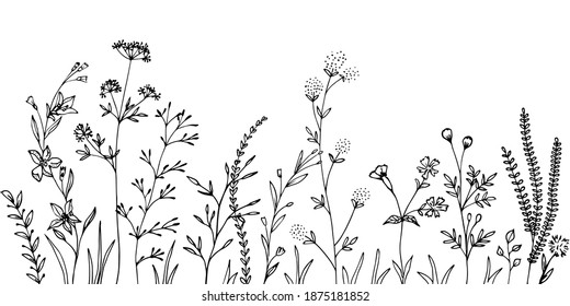 Black silhouettes of grass, flowers and herbs.