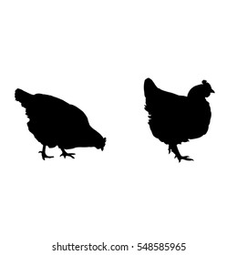 Black silhouettes of hens and chickens on a white background - vector