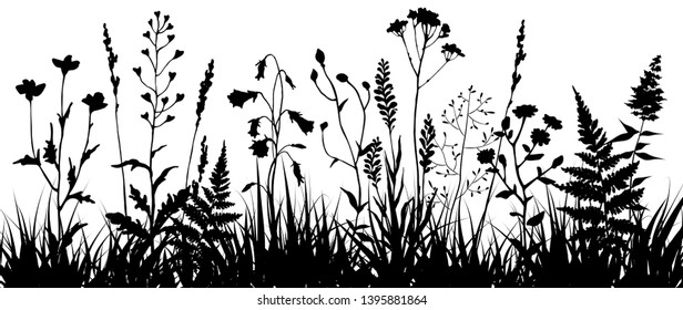 Black silhouettes of meadow wild herbs and flowers. Wildflowers. Floral background. Wild grass. Vector illustration.