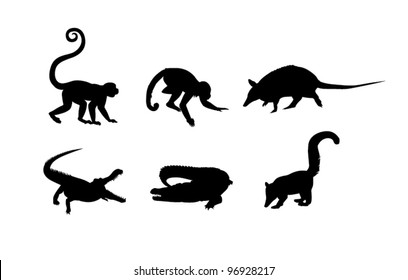 Black silhouettes of monkey, alligator and ant-eater on the white background