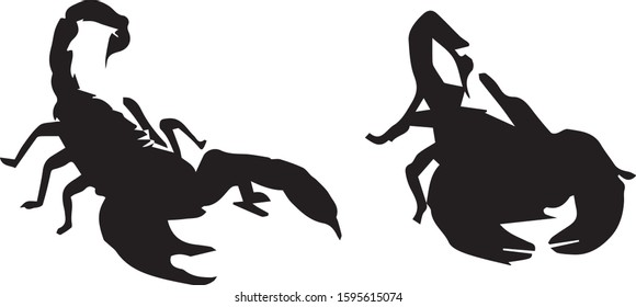 Black silhouettes of scorpion on a white background. Wild animals. Vector illustration