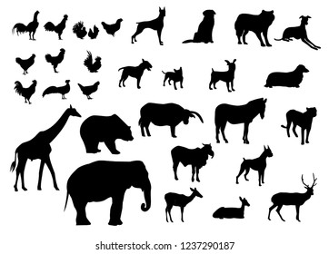 Black silhouettes set of animals various types on white background