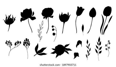 Black silhouettes of tulips, peons. Vector illustration.