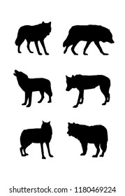 Black silhouettes of wolf in different poses isolated on white background. Wild carnivore. Vector realistic illustrations of forest animals