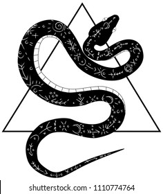 black snake with pagan design