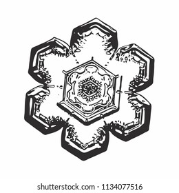 Black snowflake on white background. This vector illustration based on macro photo of real snow crystal: small star plate with simple hexagonal shape and unusually complex inner pattern for such size.