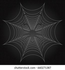 black spider and web, cobweb