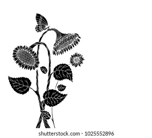 Black sunflower on a white background. Free place for inscription