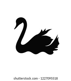 Black Swan silhouette vector drawing. Bird floating on water. Hand drawn wildlife animal. Fauna. Swan lake. Thin line waterbird specie drawing. Minimalistic contour illustration