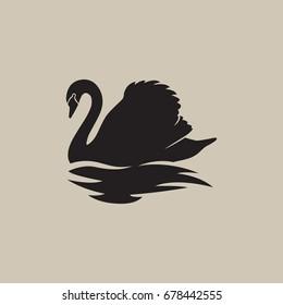 black swan swimming reflection vector illustration
