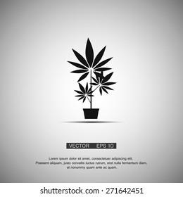 Black symbol growing marijuana. Vector eps 10