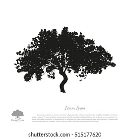 Black tree silhouette on a white background. Picture of apple. Vector illustration.
