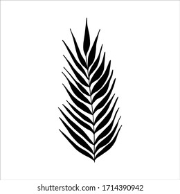 Black tropical leaf silute on an isolated white background. Botanical tree branches, palm leaf on the stem. Spring summer leaf. Concept design logo icon for the application. Vector illustration.