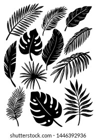 black tropical leaves on a white background
