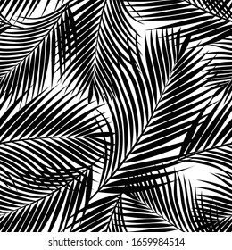 Black tropical palm leaves texture on white backdrop. Seamless vector background. Botanical illustration