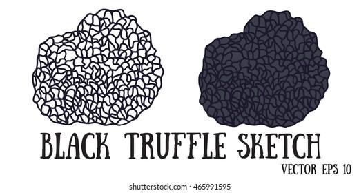 Black truffle mushrooms cartoon sketch vector.