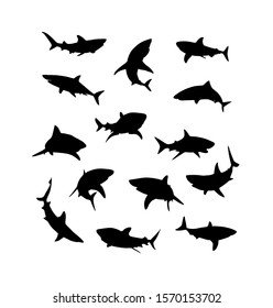 Black vector hand-drawn drawing of sharks fishes silhouettes set isolated on white background.Ocean,sea fish, animal swimming, fauna stencil design illustration.