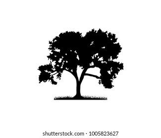 Black Vector Oak Tree Illustration Hand Drawing Logo Silhouette