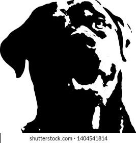 Black vector silhouette of rottweiler