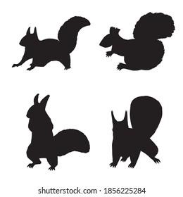 Black vector silhouette of squirrels.