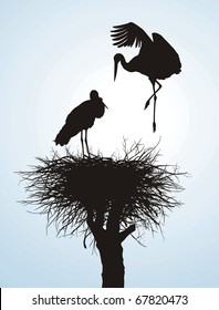 Black vector silhouettes of two storks to nest
