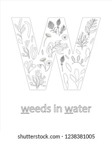 Black and white alphabet letter W. Phonics flashcard. Cute letter W for teaching reading with cartoon style seaweeds in water. Coloring page for children