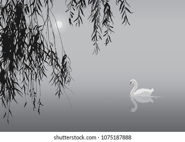 black and white background with white swan and willow branches, vector illustration