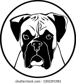 black white boxer dog