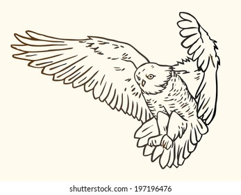 Black and white contour illustration of a flying owl