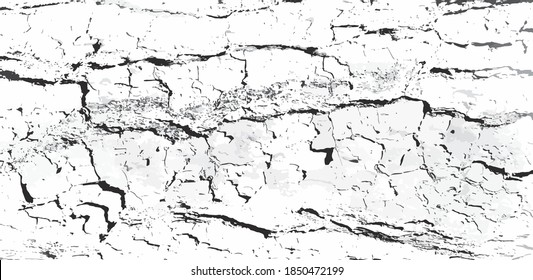 Black and white cracked tree bark textured surface with rough scratchy texture.