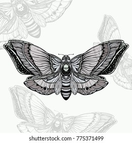 black and white deadhead butterfly doodle illustration