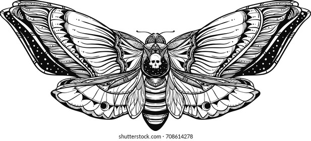 black and white deadhead butterfly ornate illustration