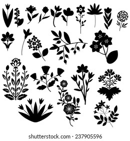 Black and white decorative flowers collection