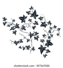 Black and white doodle ivy leaves. Vector illustration